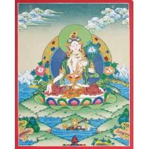"White Tara Tibetan Thangka Painting 15.5"" W x 20.5"" H"